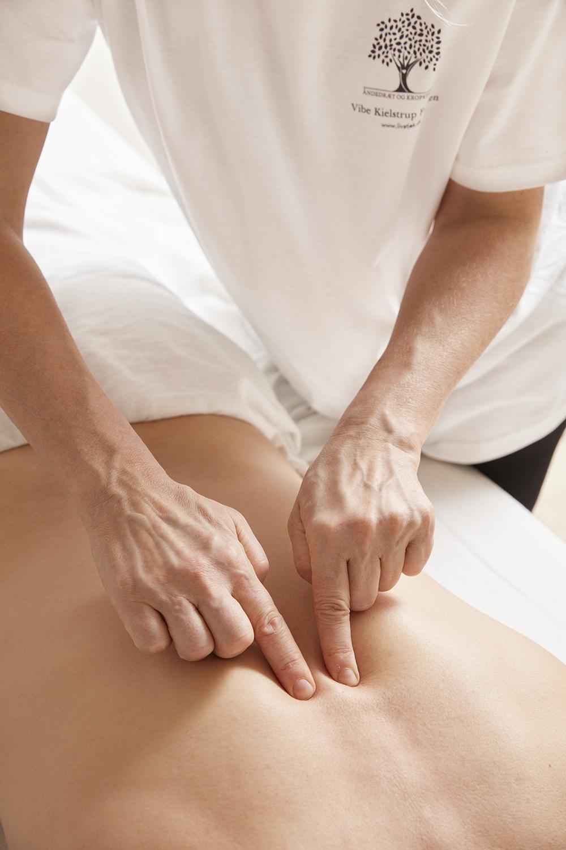 Livstjek - Kropsbehandling - VURDERING AF RYG